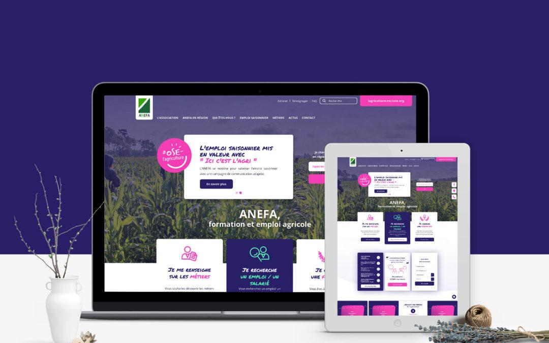 Un nouveau site pour l'ANEFA