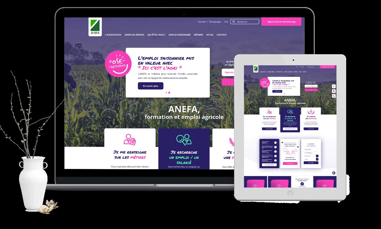 ANEFA Refonte du site web